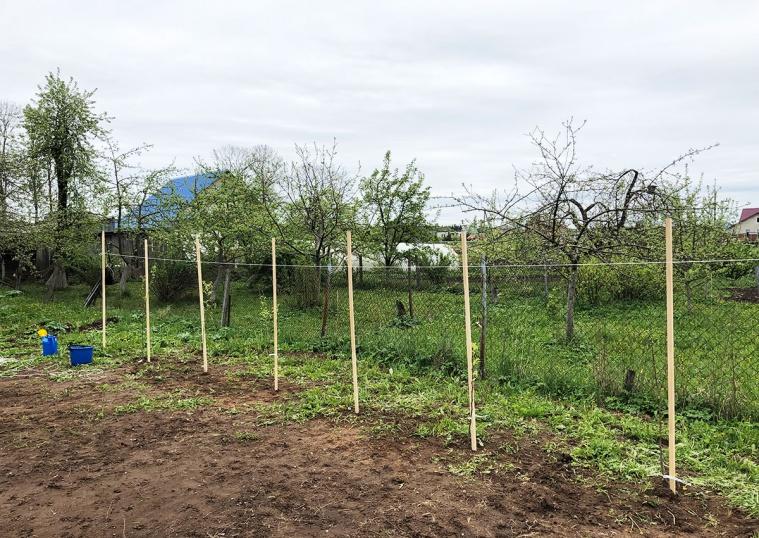 Посадка колоновидных деревьев - 8 мая 2019 года (высадили: 3 черешни, 2 яблони, 2 груши, абрикос)