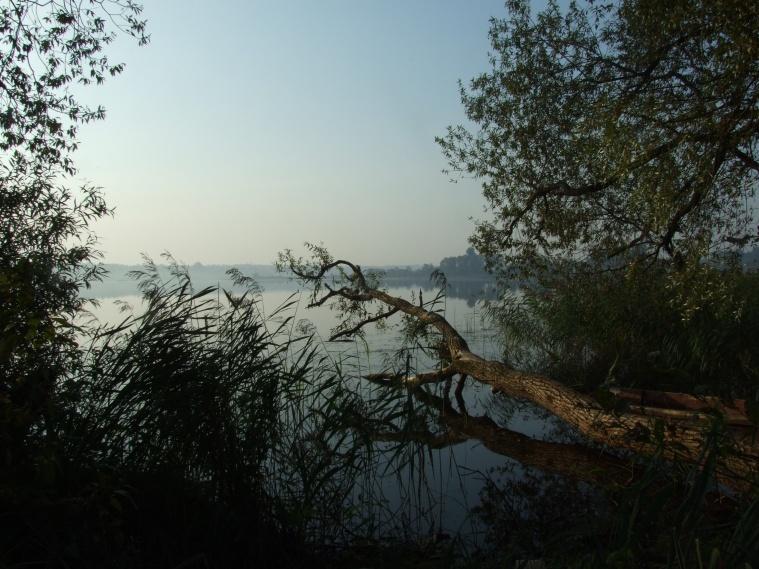 Где-то на том берегу был монастырь