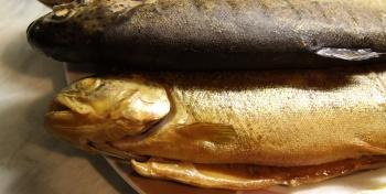 Рыба горячего копчения в домашних условиях (рецепт с пошаговыми фотографиями)