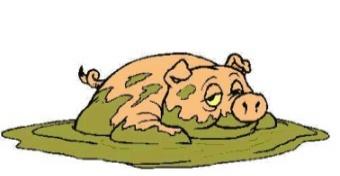 Свинья везде грязь найдет...
