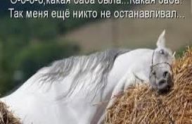 Весенне - мартовское